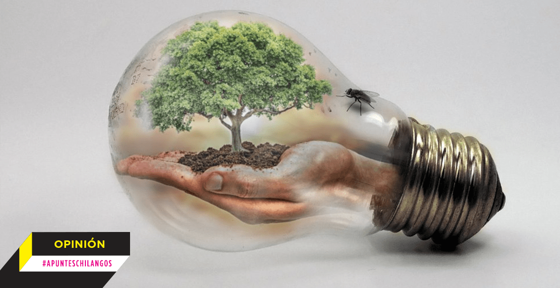#ApuntesChilangos: Cuidar la vida, marchar por la Tierra