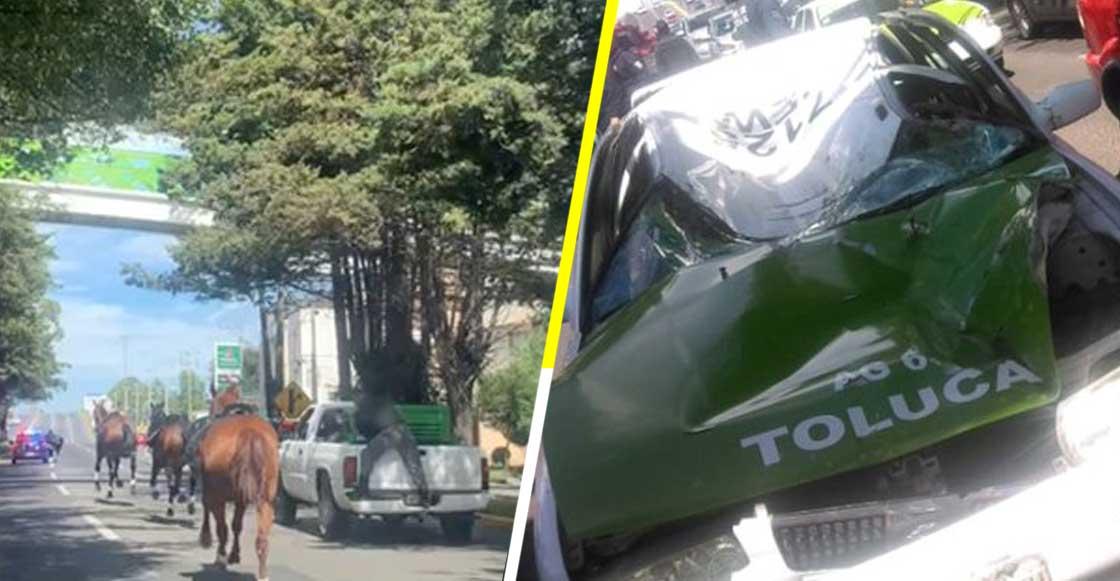 Caballos de la policía se asustan con pirotecnia y provocan estampida en calles de Toluca