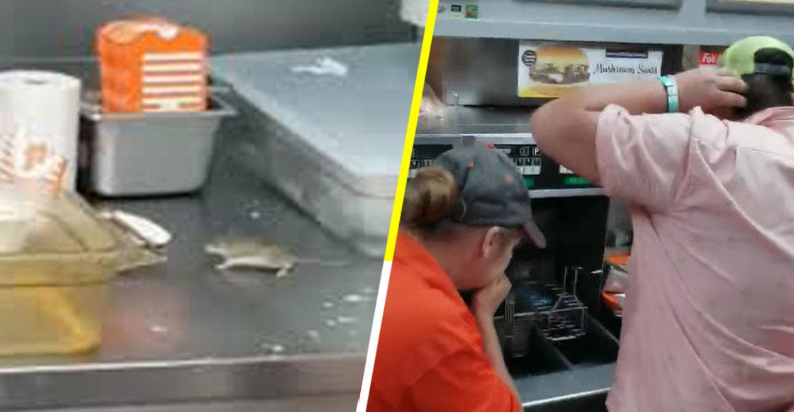 OLOV: Captan el momento en el que un ratón cae a freidora de papas en un restaurante