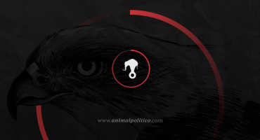 #YoSoyAnimal: Animal Político responde ante 'campaña de difamación'