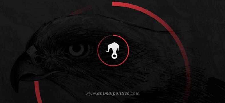 yosoyanimal-animal-politico-acusaciones-video-youtube-carta-mensaje-daniel-moreno
