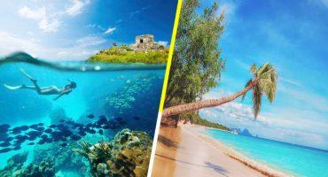 Reportan que el sargazo se ha ido del Caribe Mexicano