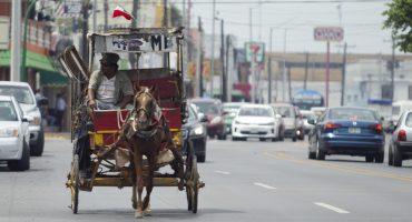 Nuevo León prohibió el uso de animales de tiro y carga en áreas urbanas