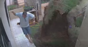 ¡ALV! Hombre explota su jardín al intentar eliminar un nido de cucarachas