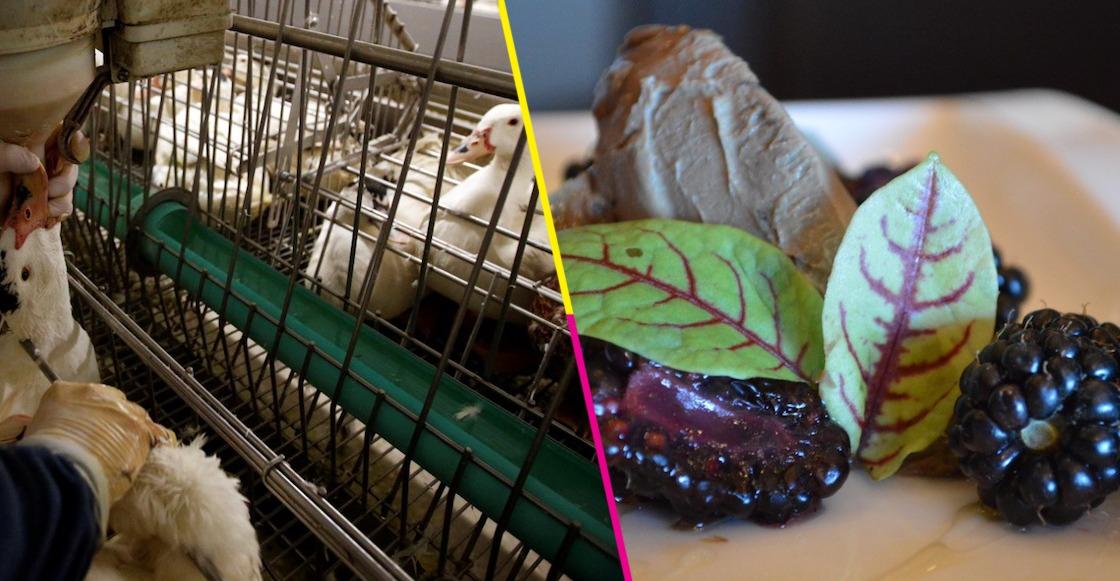 Nueva York prohíbe la venta del foie gras