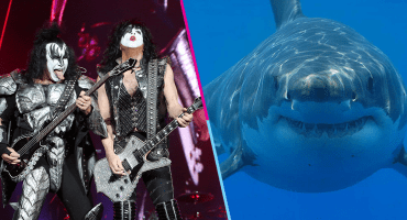 Como pez en el agua: KISS dará un show para una enorme audiencia... de tiburones