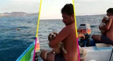 ¡Aplausos! Unos pescadores rescataron a un perrito del mar en Baja California Sur