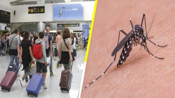 Alertan a viajeros mexicanos por virus de Encefalitis Equina del Este en Estados Unidos