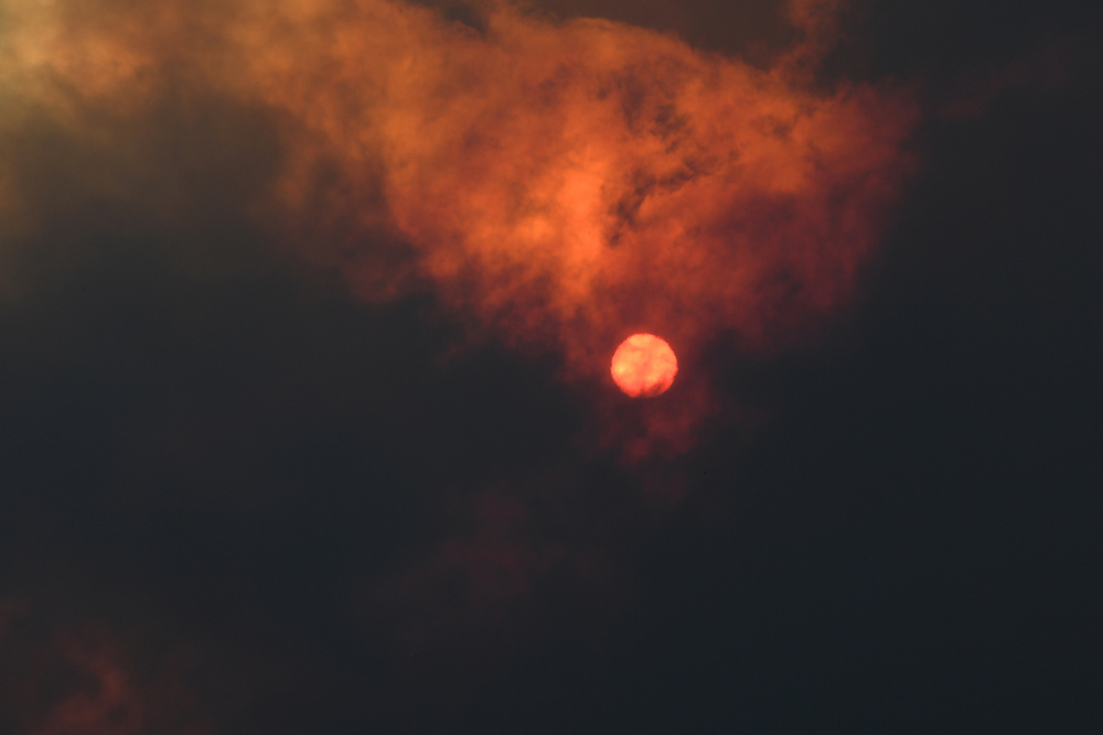 Australia-incendios-forestales-julio-noviembre