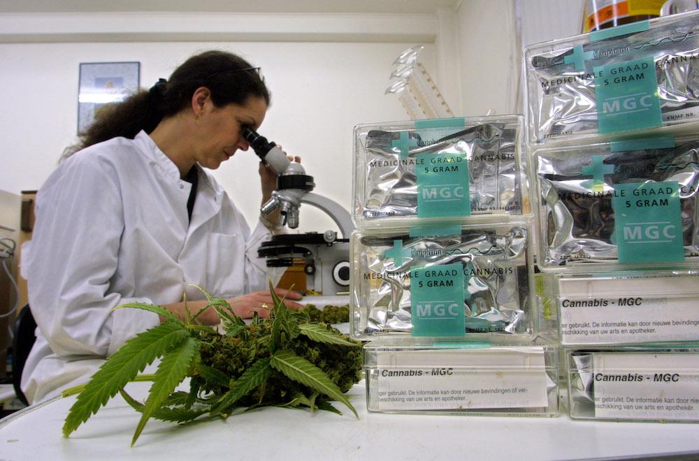 Cannabis-méxico-uso-ludico-medico