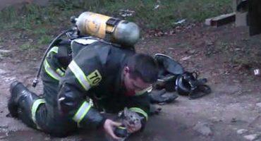 Sí estamos llorando: Bombero rescata a gatito de un incendio y trata de reanimarlo 😭
