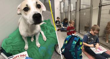 Awww: Estos niños le leen a perritos para calmar su ansiedad