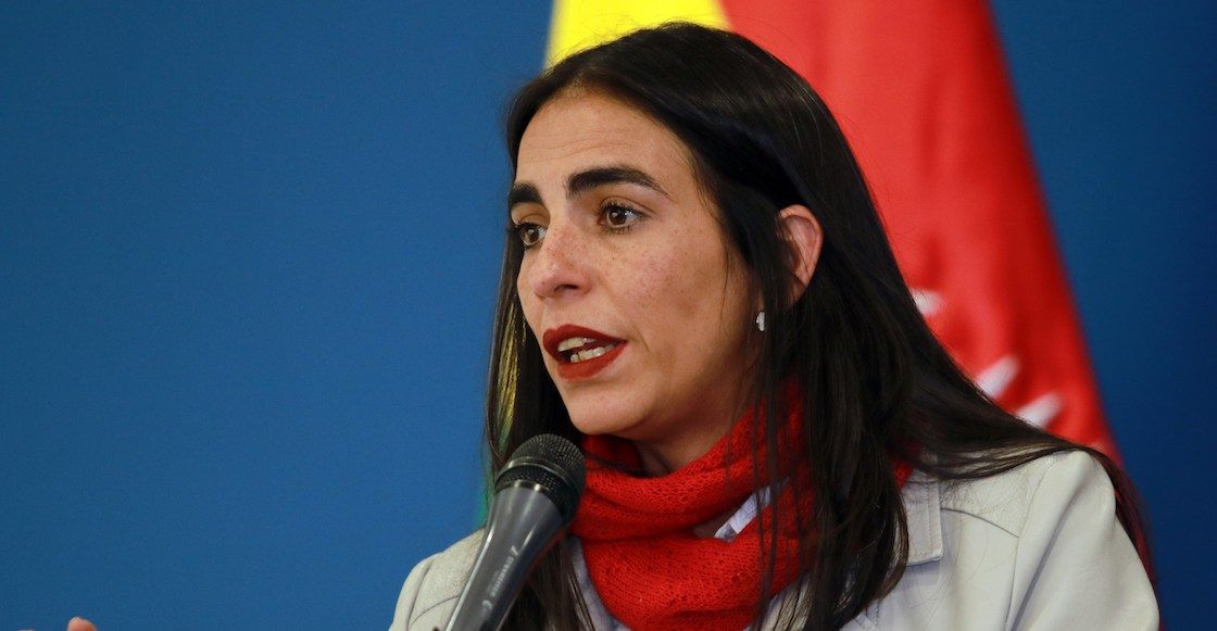 gabriela-montano-ministra-salud-diputada-senadora-evo-morales-llega-mexico