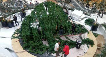 Herido en Plaza Manacar porque se le desplomó un gigantesco árbol de Navidad