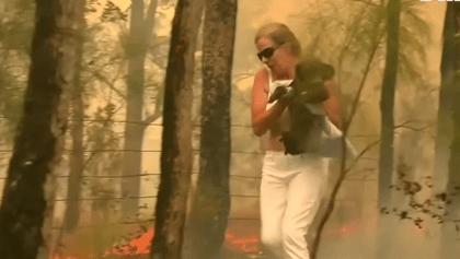 ¡Wow! Una mujer se arriesgó para salvar a un koala de los incendios de Australia