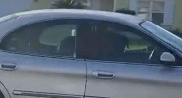Rápido y furioso: Captan a perrito conduciendo y dando vueltas en un auto