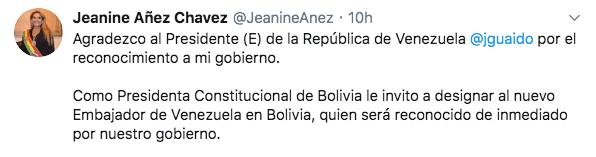 universo-paralelo-guaido-venezuela-bolivia-anez-presidenta-reconoce-02