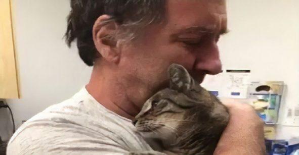 ¡Otro emotivo reencuentro! Este hombre se reunió con su gato siete años después de su desaparición