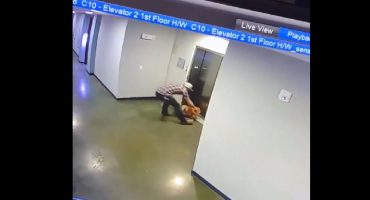 ¡Estuvo cerca! Este hombre evitó que un perrito muriera ahorcado por un elevador con su propia correa