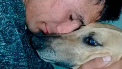 Nada vale más que la amistad: Le robaron a su perro y ofreció su auto como recompensa para recuperarlo