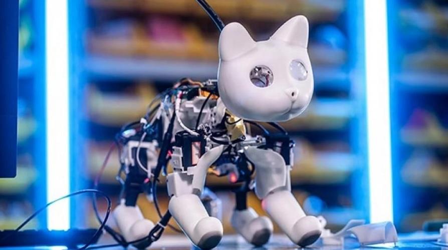 ¡La mascota del futuro! Conoce a MarsCat, el gato biónico totalmente autónomo