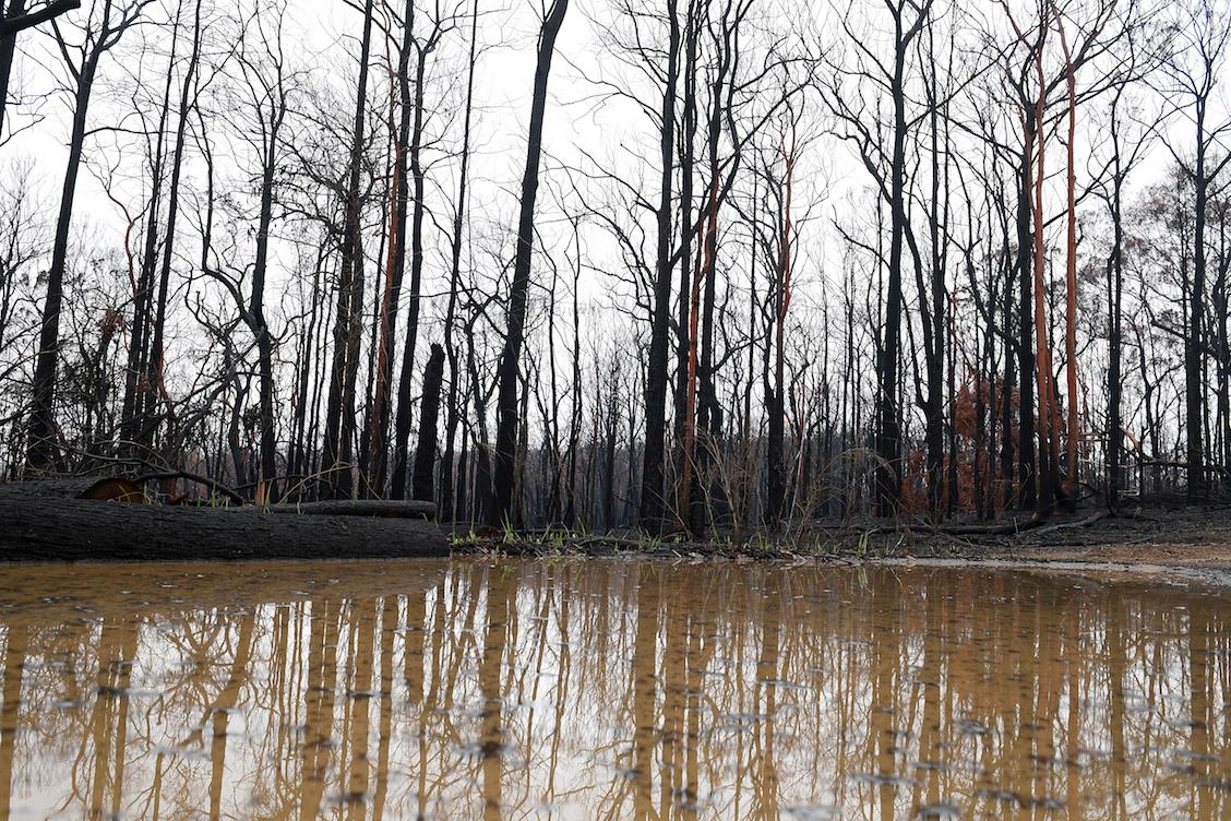 Lluvia-australia-incendios-forestales