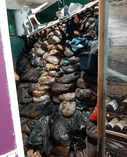 Al menos 75 reos escaparon de una prisión en Paraguay ¡por medio de un túnel!