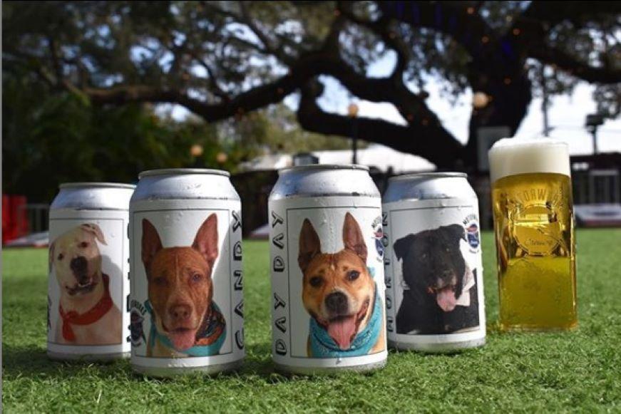 Impulsan la adopción de perros a través de latas de cerveza