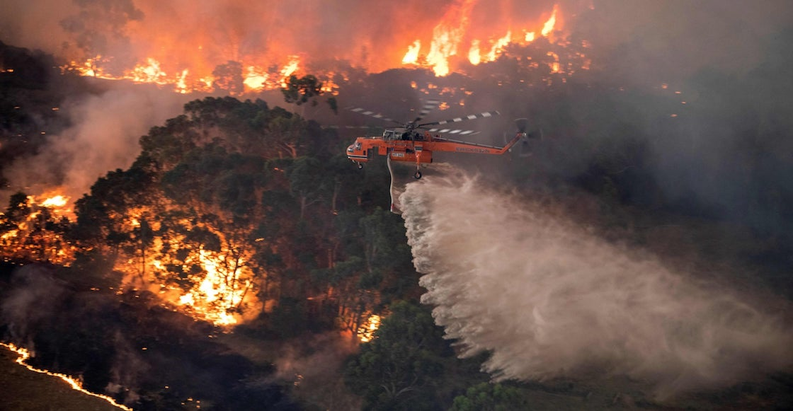 Image result for incendio australia