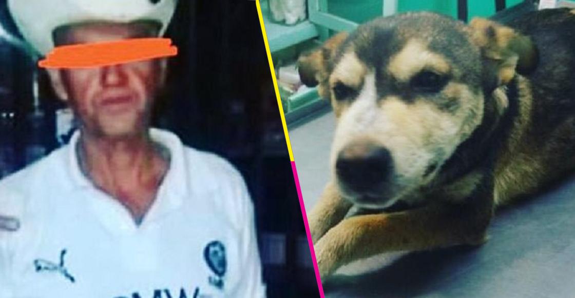 #JusticiaParaMati: Sujeto habría abusado y golpeado a perrita de Neza