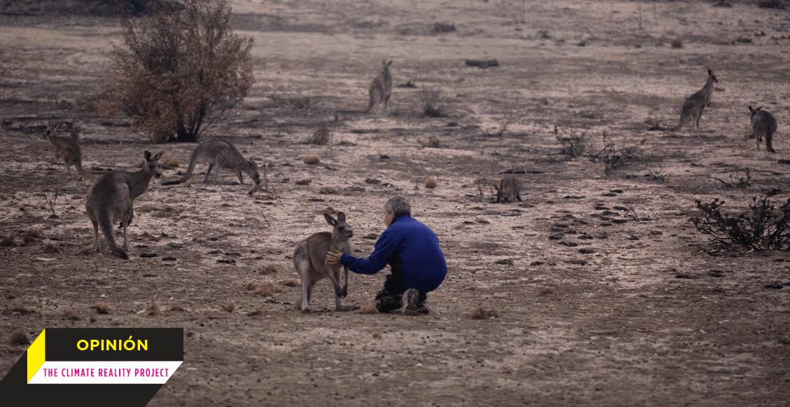 Crisis climática: La enseñanza de Australia