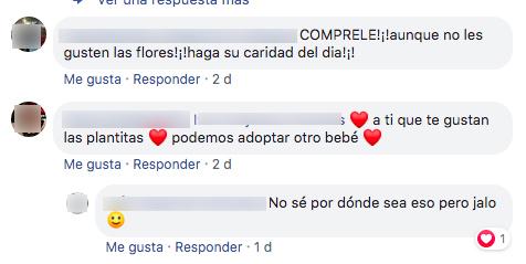 Internet se une de nuevo y pide ayuda para que un abuelito pueda vender todas sus flores