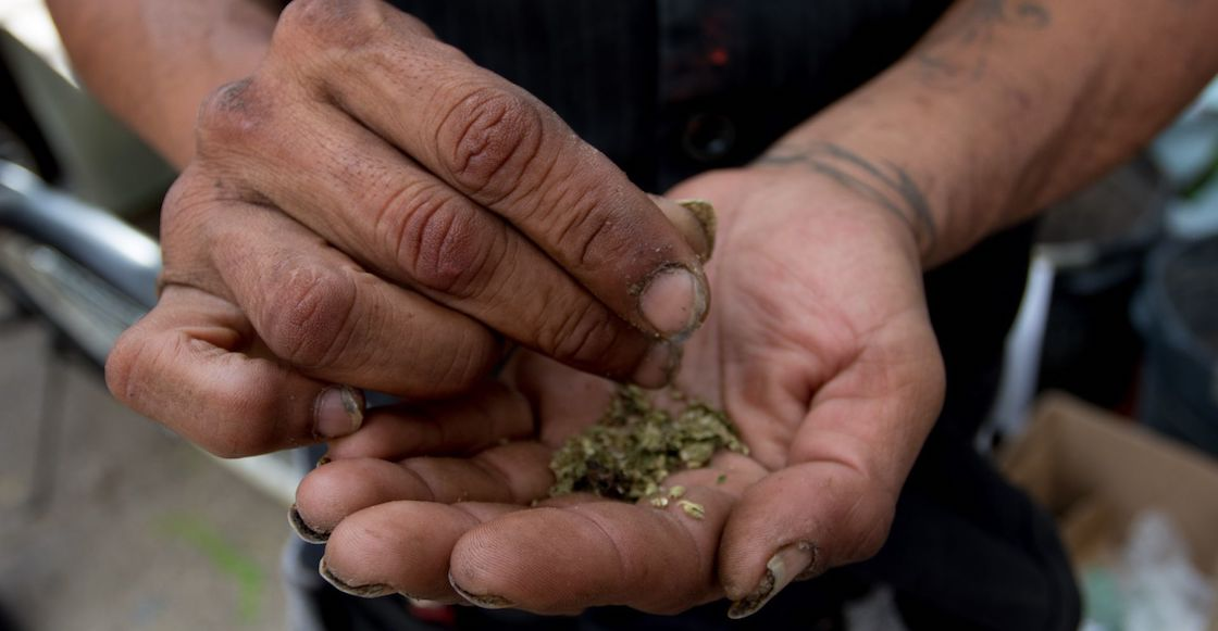 Fines for cannabis laws and regulations