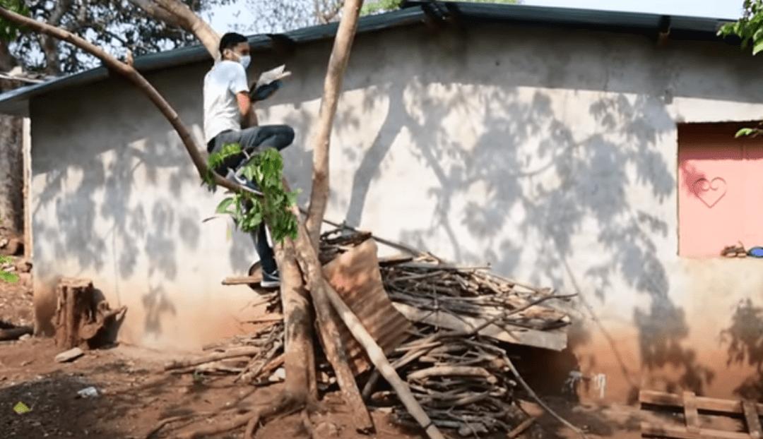 Este joven salvadoreño sube diariamente a un árbol para tomar sus clases en línea