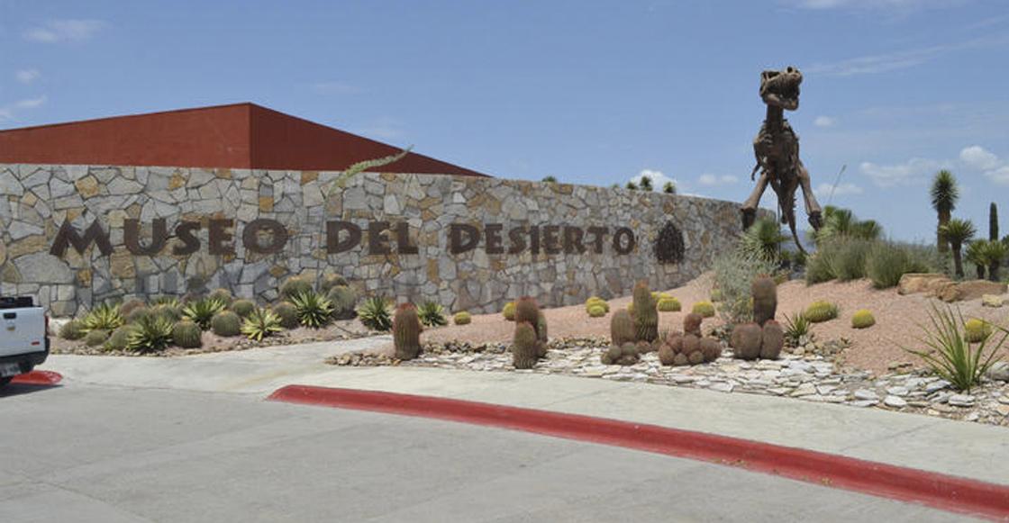 museo-desierto-coahuila-saltillo