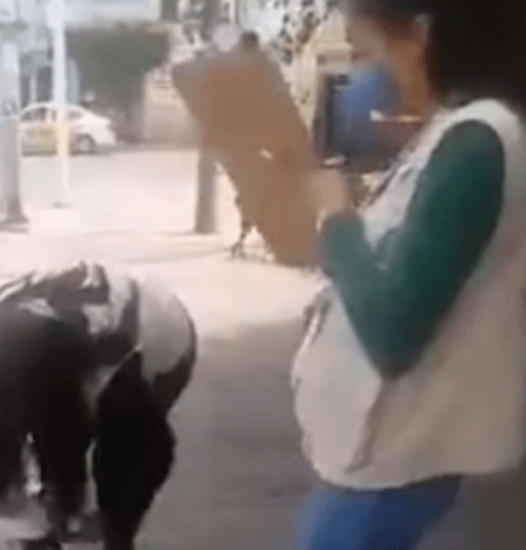 Ay Jalisco: Inspectores decomisan productos que artesanos estaban cambiando por despensa