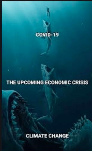 crisis ambiental