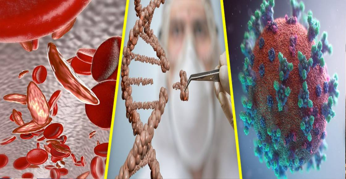 La edición genética da esperanza a los pacientes de células falciformes y COVID-19
