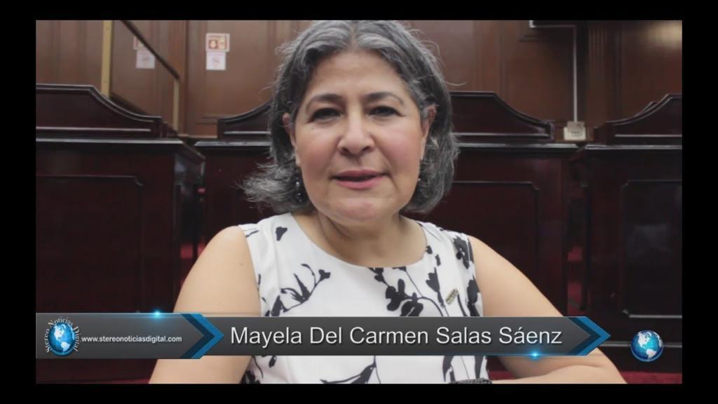 Diputada Mayela del Carmen Salas