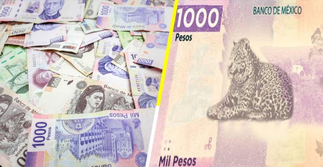 ¡Revolucionario! Así será el nuevo billete de mil pesos