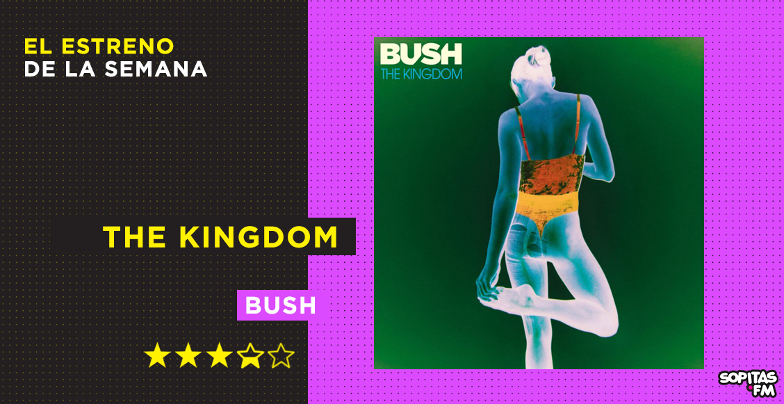 Bush y su nuevo disco The Kingdom
