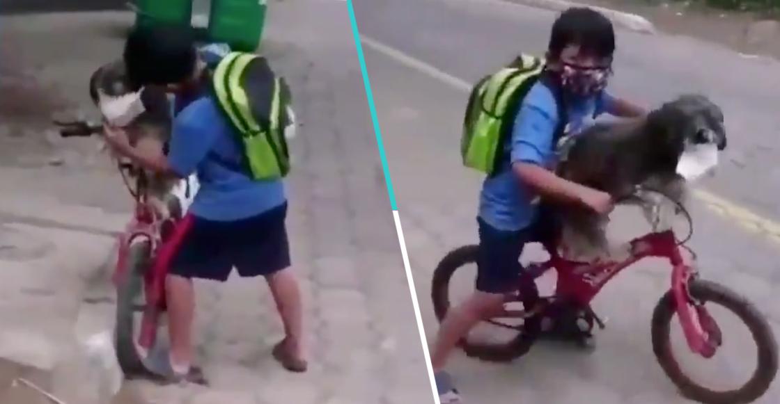 Niño le pone cubrebocas a su perro para ir a la tiendita y se vuelve viral