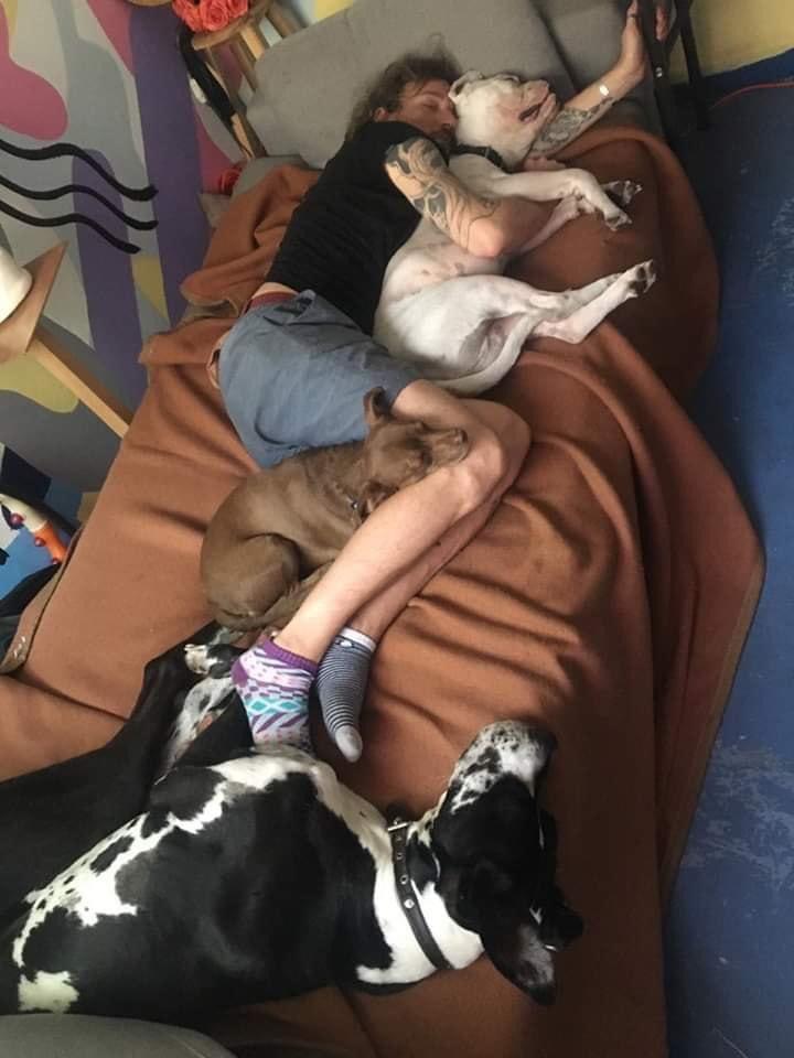Pablo Fustec: El actor que murió luego de tratar de rescatar a su perrita en Michoacán