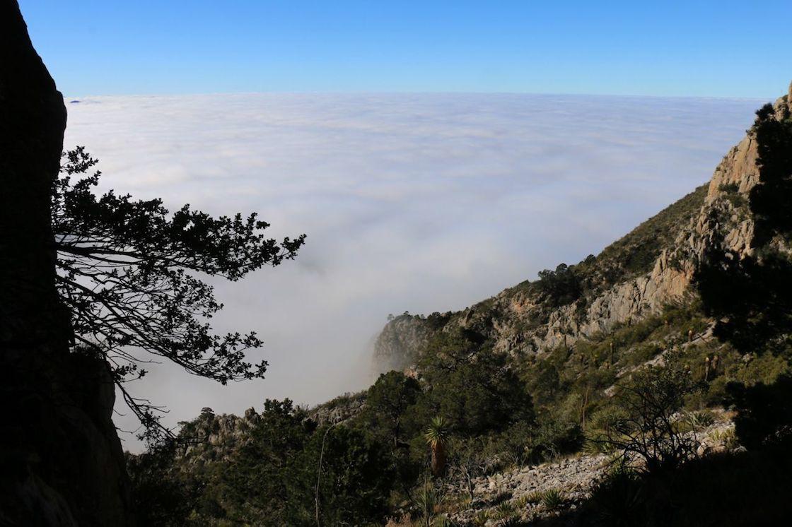 cueva-del-chiquihuite-zacatecas-inah-america-del-norte