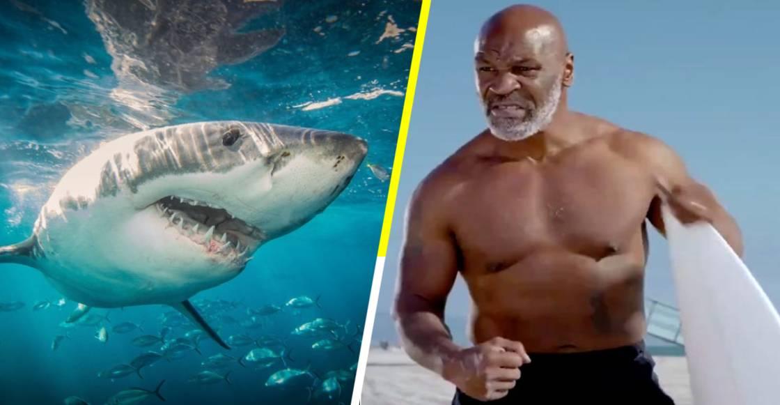 Mike Tyson encontró un rival a su altura en la Semana del Tiburón de Discovery Channel