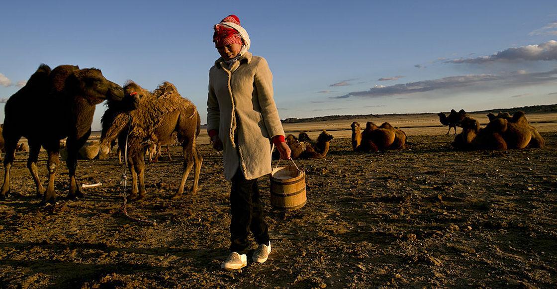 mongolia-peste-bubonica-rusia