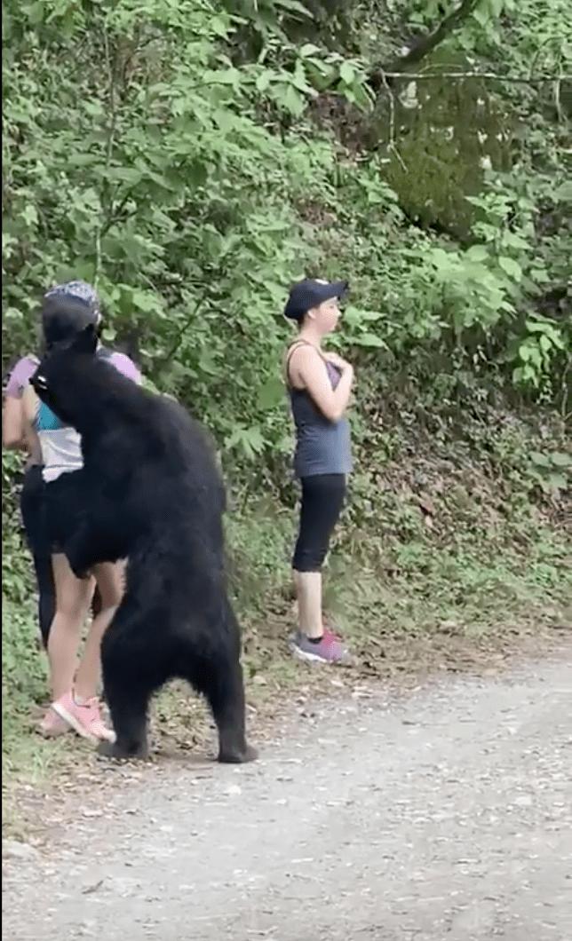 oso-negro-sorprende-jovenes-parque-monterrey-nuevo-leon