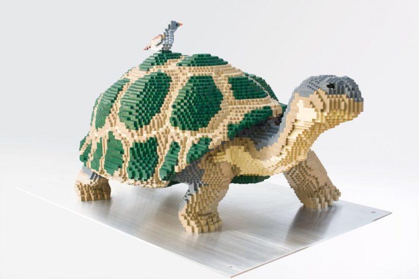 tortuga-lego