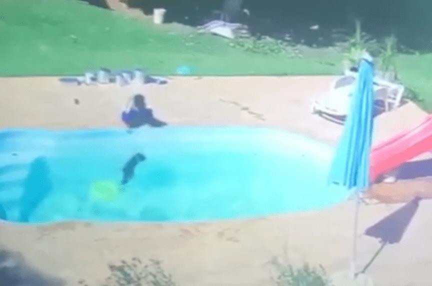 Niño de tres años salva a su mejor amigo de ahogarse en una alberca