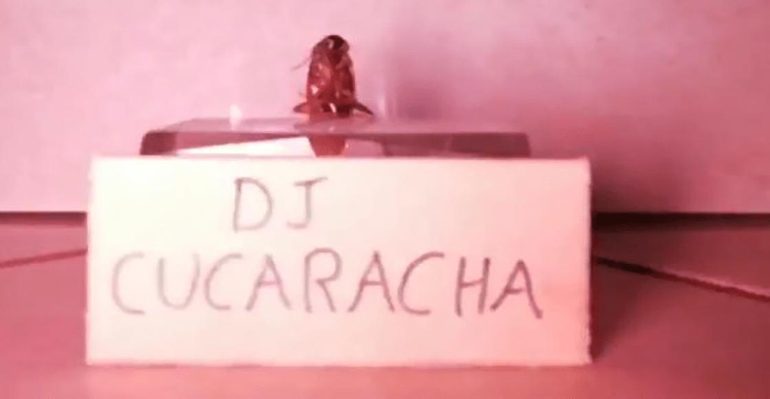 Nace una leyenda: DJ Cucaracha 'transmitió un concierto en vivo' y rompió el internet